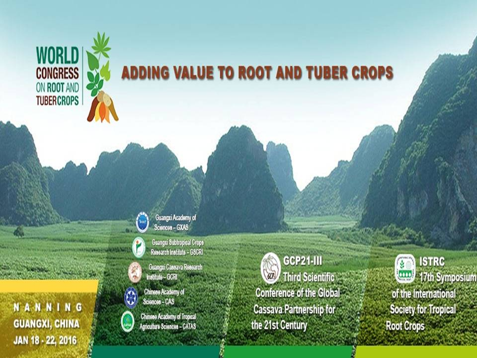 Adding Value To Root And Tuber Crops leaflet